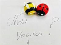 Vorschau: Frieder & André Uhlig, Magnetpin Set Käfer & Biene_Bild4
