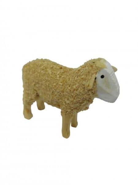 Schaf, stehend 4 cm von Nestler-Seiffen_Bild1