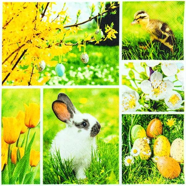 Osterservietten Easter Collage von Home Fashion®