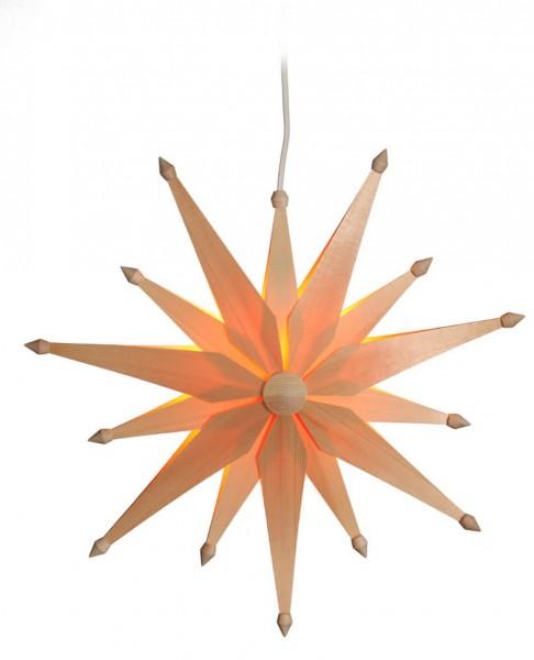 Eckert, Weihnachtsstern exklusiv, elektrisch beleuchtet
